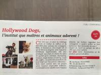 On parle de nous !!! HOLLYWOOD DOGS !!  Salon de toilettage pour chiens & chats star !!  Paris 16ème Foch